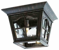 Trans Globe 5427 The Outdoor Collection VI Traditional Outdoor Ceiling Light