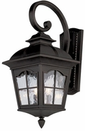 Trans Globe 5429-BK Briarwood Traditional Black Outdoor Wall Light Sconce