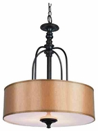 Trans Globe 9624 Modern Meets Traditional II Style Pendant Light