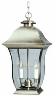 Trans Globe Classic Transitional Style Outdoor Hanging Light