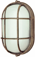 Trans Globe PL-41015-RT Aria Contemporary Rust Fluorescent Outdoor Bulkhead Lighting Wall Sconce