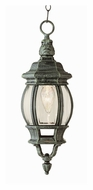 Trans Globe Rochefort Antique Style Hanging Outdoor Pendant Lamp With Finish Options