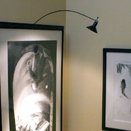 Transitional Picture & Display Lights
