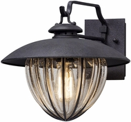 Troy B5041 Murphy Vintage Vintage Iron Outdoor Small Wall Sconce Lighting