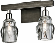 Troy B6002 Citizen Contemporary Graphite And Polished Nickel 2-Light Bathroom Lighting