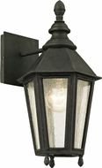 Troy B6431 Savannah Vintage Iron Exterior 7.5  Wall Lighting Fixture