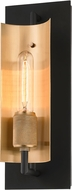 Troy B6781 Emerson Contemporary Carbide Black / Brushed Brass Wall Sconce