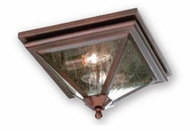 Troy CCD8990OR Geneva Traditional Outdoor Flush Mount Ceiling Light