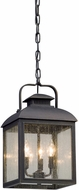 Troy F5087 Chamberlain Traditional Vintage Bronze Outdoor Pendant Lamp