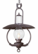 Troy FCD9014OBZ La Grange Traditional Outdoor Pendant Light - 20 inches wide