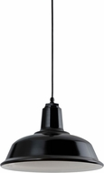 Troy RLM 5DRH14MBK-BC Bryson Gloss Black Exterior 14  Pendant Lighting