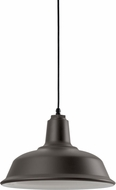 Troy RLM 5DRH14MTBZ-BC Bryson Textured Bronze Outdoor 14  Pendant Light