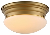 Urban Classic 1475F14BB Daisy Burnished Brass Overhead Lighting