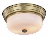 Urban Classic 1479F15BB Ellis Burnished Brass Overhead Lighting Fixture