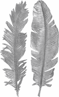 Uttermost 04206 Sparrow Contemporary Silver Leaf Wall Art