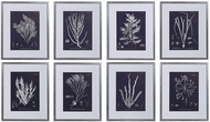Uttermost 33686 Coral On Navy Silver Framed Prints (set of 8)