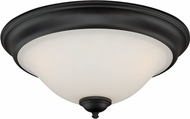 Vaxcel C0101 Belleville Oil Rubbed Bronze Ceiling Lighting Fixture