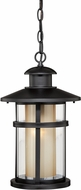 Vaxcel T0138 Cadiz Oil Burnished Bronze Exterior Drop Lighting