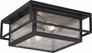 Vaxcel T0470 Hyde Park Contemporary Espresso Bronze Outdoor Flush Ceiling Light Fixture