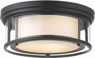 Z-Lite 426F16-MB Willow Modern Matte Black 16  Flush Mount Light Fixture