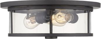 Z-Lite 462F16-BRZ Savannah Contemporary Bronze 16  Overhead Light Fixture
