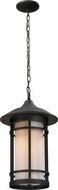 Z-Lite 528CHB-ORB Woodland Oil Rubbed Bronze 10  Wide Exterior Pendant Lighting Fixture