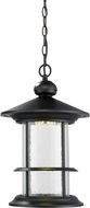 Z-Lite 552CHB-BK-LED Genesis Black Clear Seedy LED Exterior Pendant Lighting
