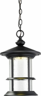 Z-Lite 552CHM-BK-LED Genesis Black Clear Seedy LED Outdoor Pendant Light
