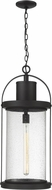 Z-Lite 569CHXL-BK Roundhouse Black Outdoor Drop Ceiling Lighting