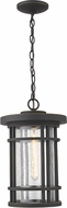Z-Lite 570CHB-ORB Jordan Contemporary Oil Rubbed Bronze Outdoor 10  Drop Ceiling Lighting