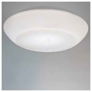 Zaneen D82003 Delphinia Small Contemporary Style Flush-Mount Ceiling Light