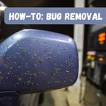 How To Remove Bugs