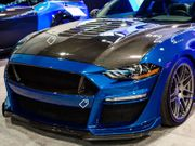 2020 Mustang Shelby GT500 Double Sided Carbon Fiber Hood