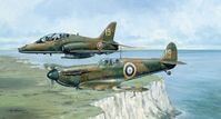 70 Years - Spitfire  - By Michael Rondot - Low Inventory