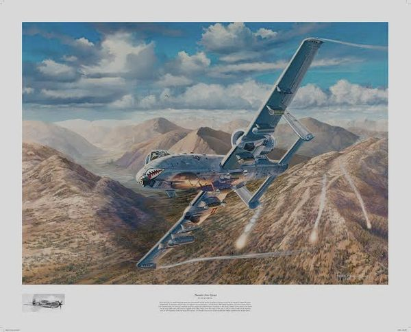 A-10 Warthog <br> NEW RELEASE by RICK HERTER<br>