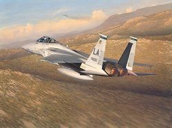 Advantage Eagle<br> NEW GICLEE CANVAS <br> by Bill Phillips
