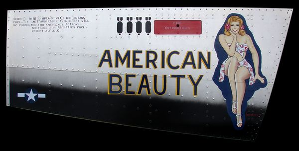 AMERICAN BEAUTY - by GARY VELASCO - Nose Art Panel - B-24