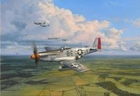 American Eagles <br> By Robert Taylor<br>