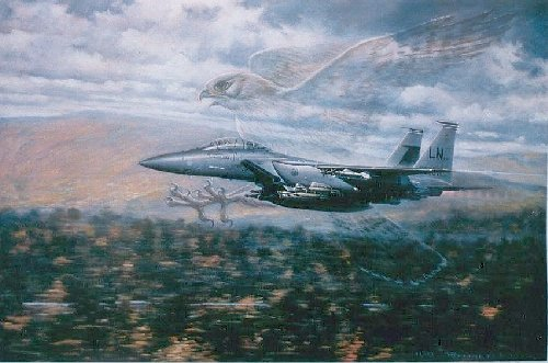 Birds of Prey <br> F-15E Eagles<br> By Ronald Wong