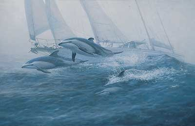 Bow Riders - Dolphins