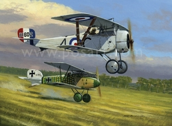 CATCHING AN ALBATROS by MARK POSTLETHWAITE