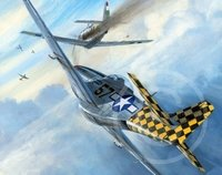 Checkertail Aces <br> NEW RELEASE by Mark Postlethwaite