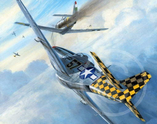 CHECKERTAIL ACES  by MARK POSTLETHWAITE - <br> NEW RELEASE