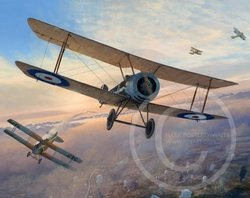 Combat Over Messines <br> NEW RELEASE by Mark Postlethwaite