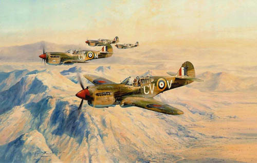 Desert Hawks<br> Royal Australian Airforce<br>By Robert Taylor