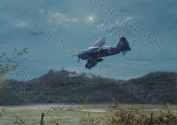 """""""FOREIGN FIELDS - LYSANDER"""" by ROBIN SMITH<br>"""