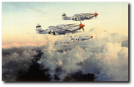 """FOURTH FIGHTER PATROL - <b style=""""color:red;font-weight: bold;"""">NEW</b>   Secondary Market by Robert Taylor"""