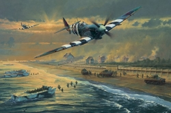 Juno Beach <br> By Anthony Saunders<br>