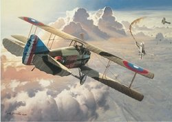 "LAST VICTORY by ROY GRINNELL <br> <b style=""color:blue;font-weight: bold;"">    Signed WWI Ace<br> Ray Brooks<br></b>"