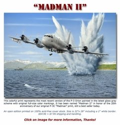Madman II <br> NEW RELEASE by Don Feight<br>